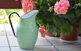 Hoe vaak planten water geven binnenshuis?